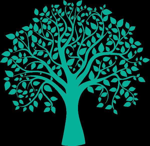arbre page 404